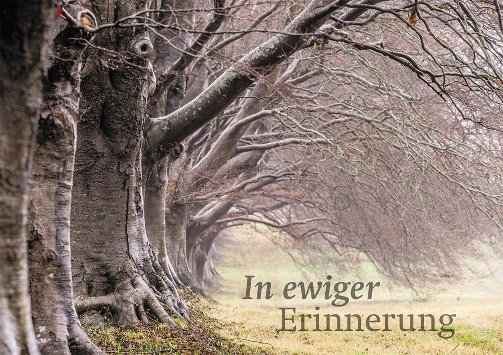 In Ewiger Erinnerung