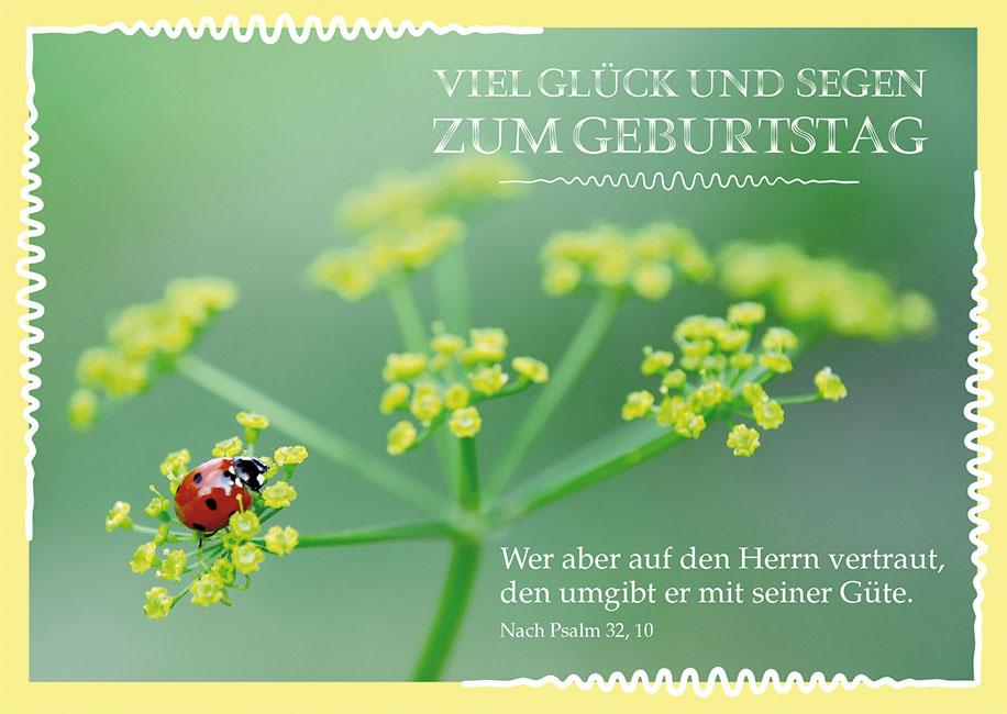 Postkarte Viel Glück und Segen zum Geburtstag